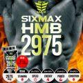 SIXMAX HMB2975 (シックスマックス エイチエムビー 2975) 140粒